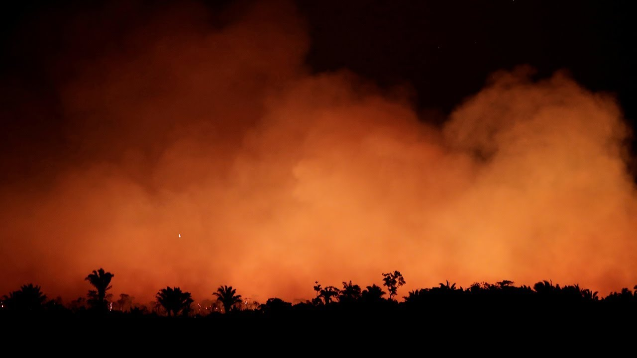 Amazon rainforest fires vast swathes of rainforest burning at record rate